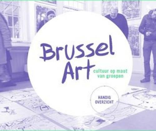 DWARSLIGGERS IN DE HOOFDSTAD. De kracht van sociaal-artistieke praktijken in Brussel.