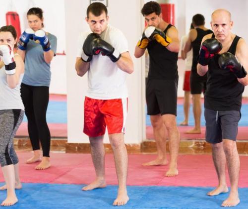 Interactiedag 'Vechtsport als middel tot...!?'