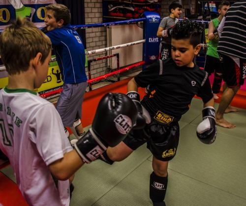 Verslag studiedag vechtsport en jeugdhulp