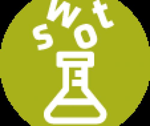 Een SWOT-analyse. Inventariseer interne werking en externe omgeving in functie van concrete acties.