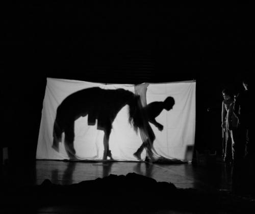 De theateracademie van Pasform vzw organiseert toonmomenten in Tienen en Oostende