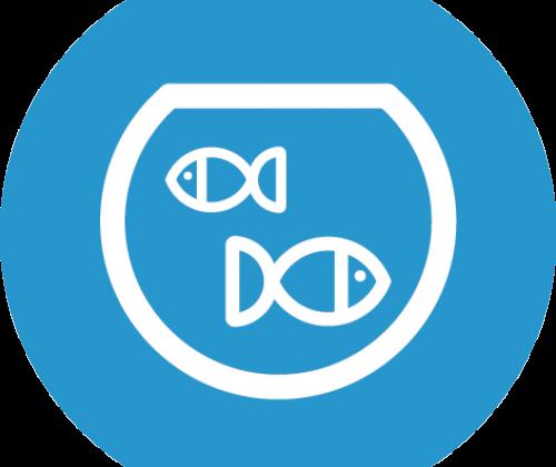 Groepsdiscussie - de visbokaal