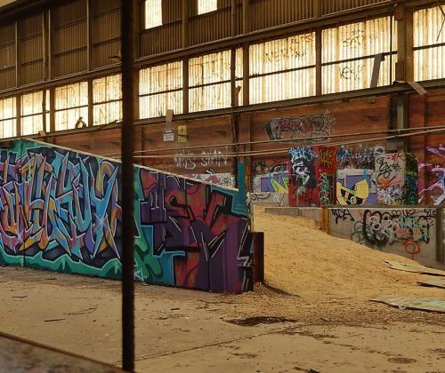 Leerreis 'Werken met ruimte in de stad'