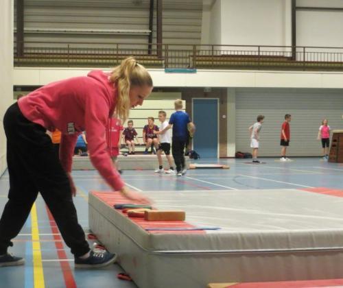 Visienota Vlaamse Sportraad